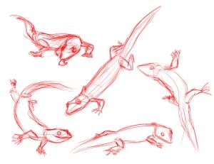 Geckos 01